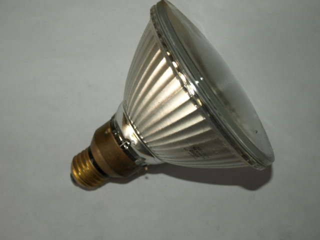 camarillo lighting lamp par38