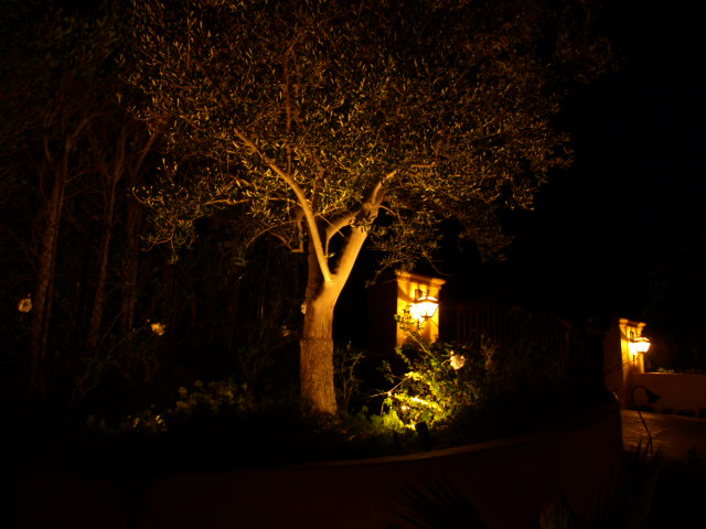 camarillo lighting landscape lights
