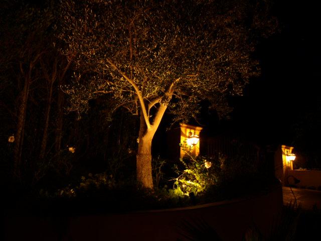camarillo lighting landscape lights